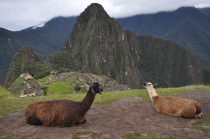 Macchu Picchu, one of the wonders of the world, and a major attraction in Peru